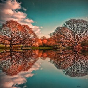 amazing-reflections-optical-illusions-38-5836d9346d198__7001480248795