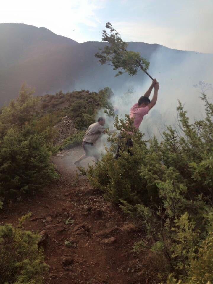 Zjarri në malin e Murashit  kryebashkiaku i Librazhdit  Janë të qëllimshme  policia të marrë masa