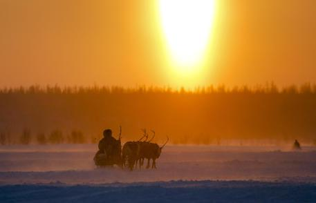 In this photo taken on Sunday, March 15, 2015, a Nenets man rides in a reindeer sled at sunset after the Reindeer Herder's Day in the city of Nadym, in Yamal-Nenets Region, 2500 kilometers (about 1553 miles) northeast of Moscow, Russia. Some participants at the Reindeer Herder's Day travel hundreds of kilometers across the frozen tundra to attend the competition in the region in northern Siberia, more than half of the territory of which lies above the Arctic Circle. (ANSA/AP Photo/Dmitry Lovetsky)